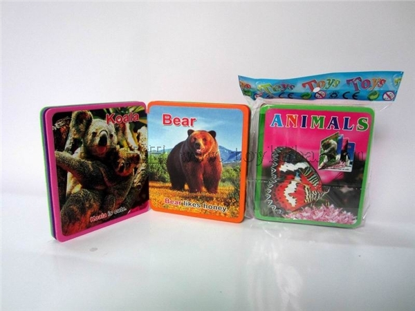 English Series recognition literacy small bubble books (animals)