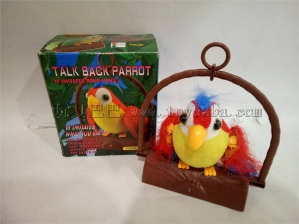 Voice controlled Parrot