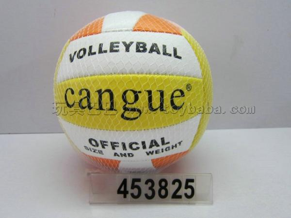 9 inches volleyball
