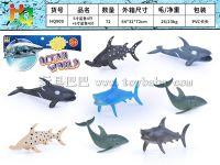 5寸鲨鱼8只