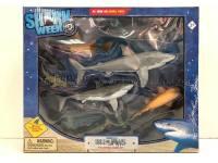 大白鲨套装