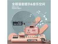 大款智能语音识别收银机(带语音识别,计算器,扩音)24PCCS,不包3*AA