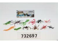 昆虫12只装